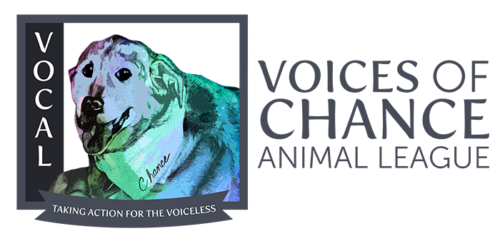 Voices of Chance Animal League